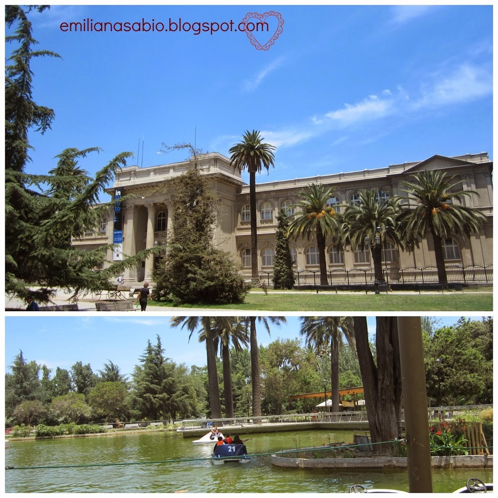 05-museo