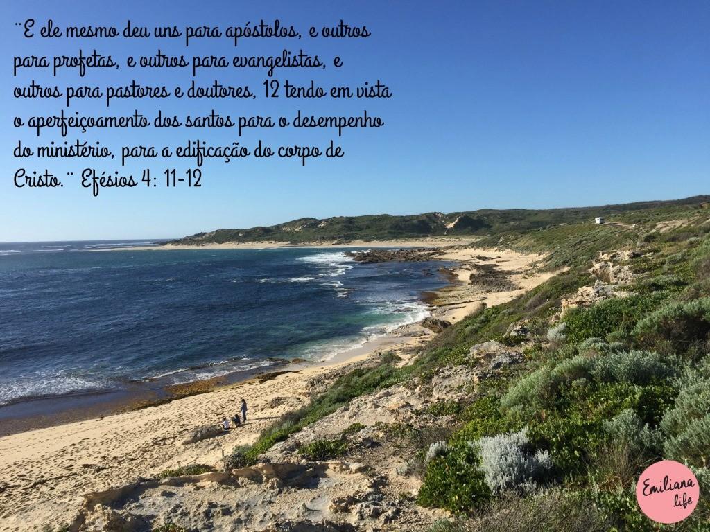 260 efesios 4 11 12