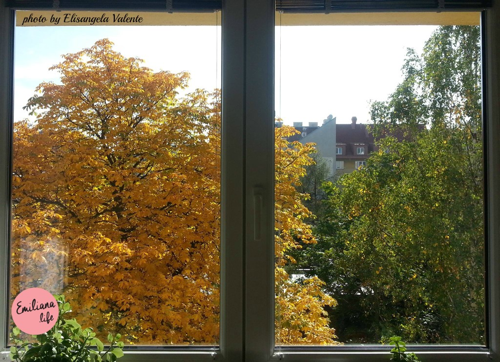 foto janela li outono editado