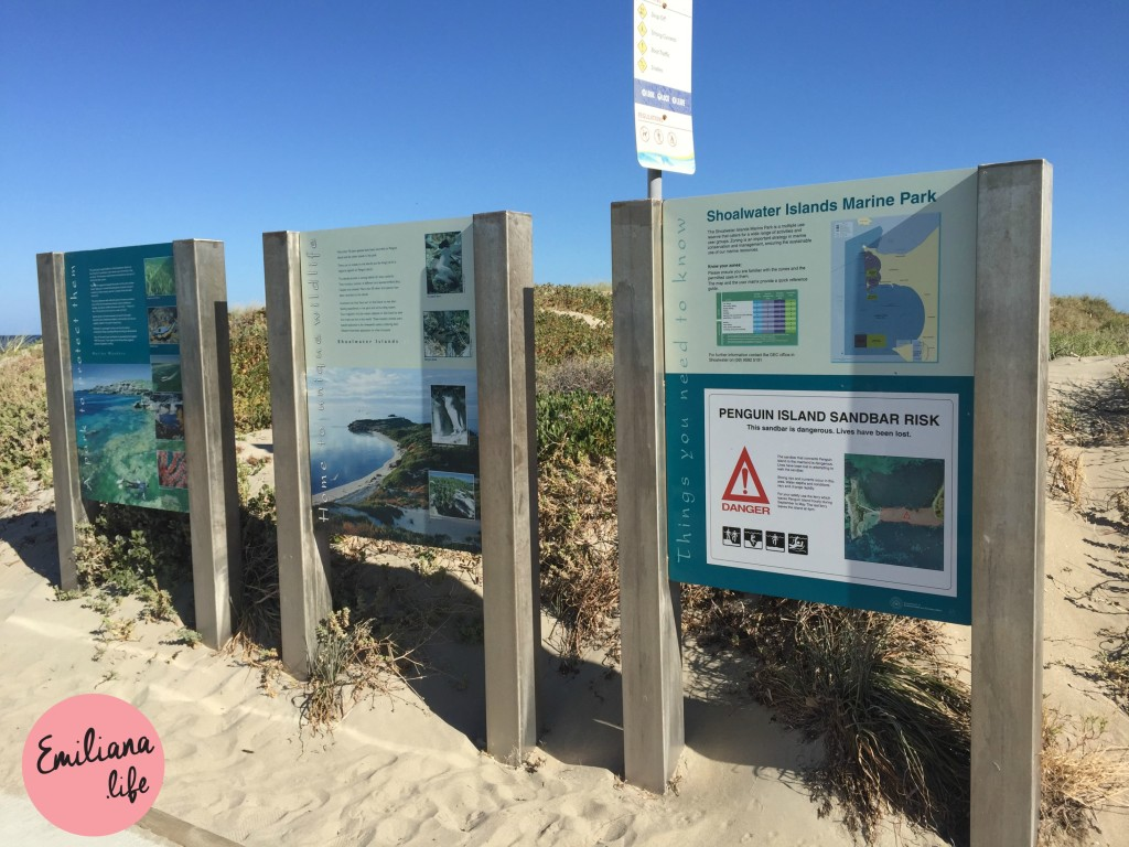 10 placas penguim island sandbar risk
