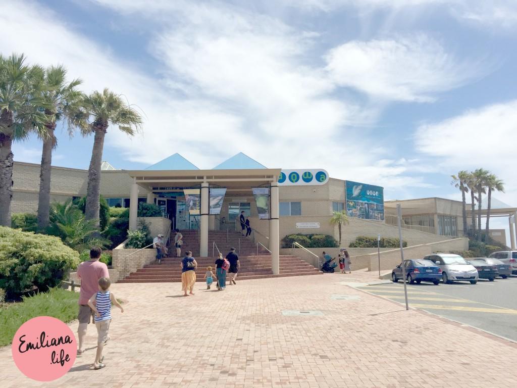 11 porta entrada Aquarium
