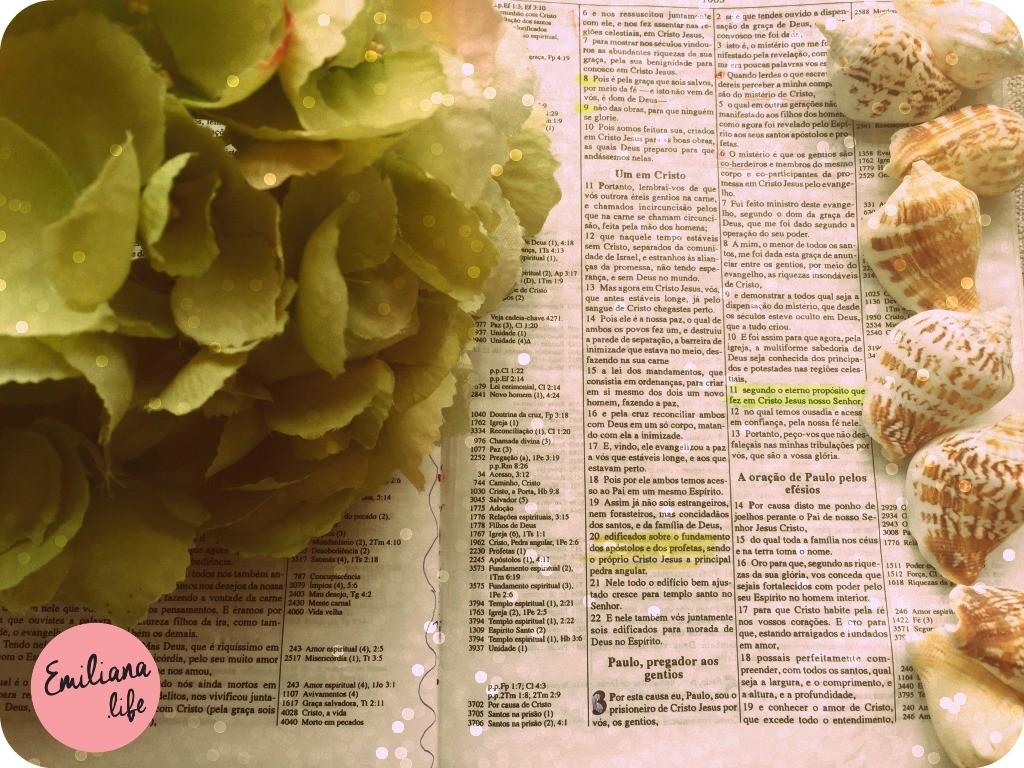 175 efesios 3 folha biblia