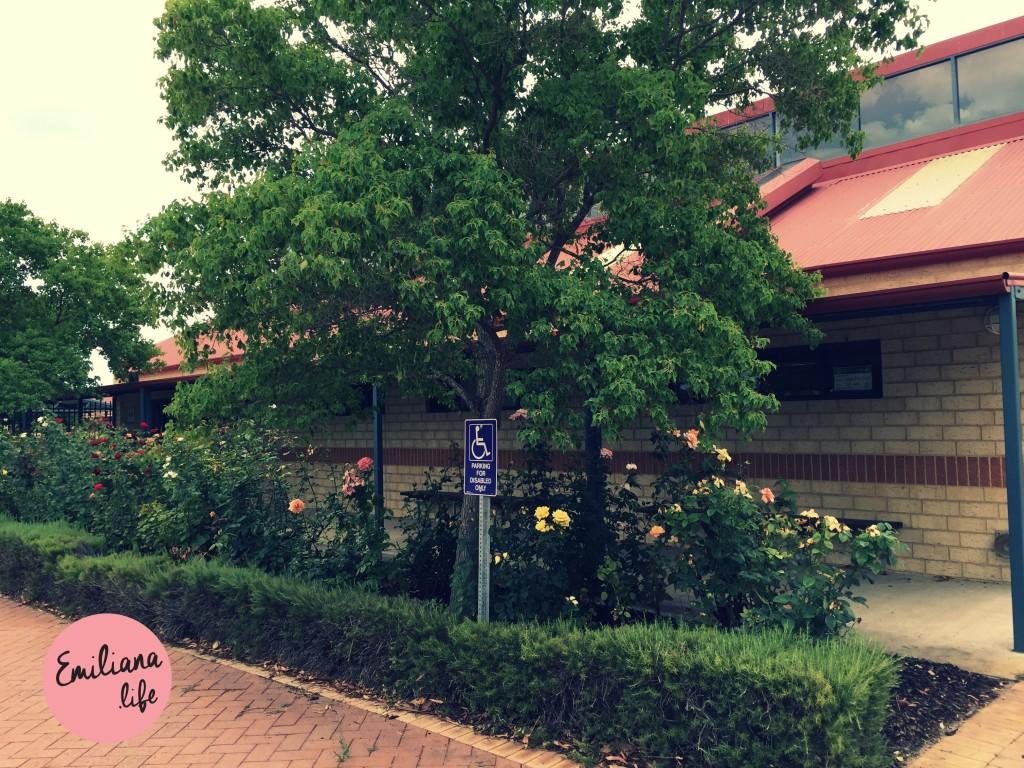 23 colegio australia