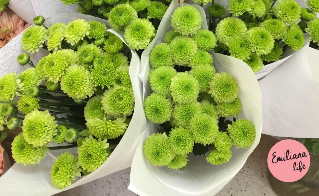 25 flores verdes