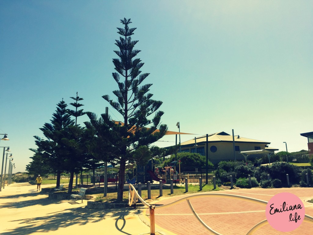 32 parque swanb beach