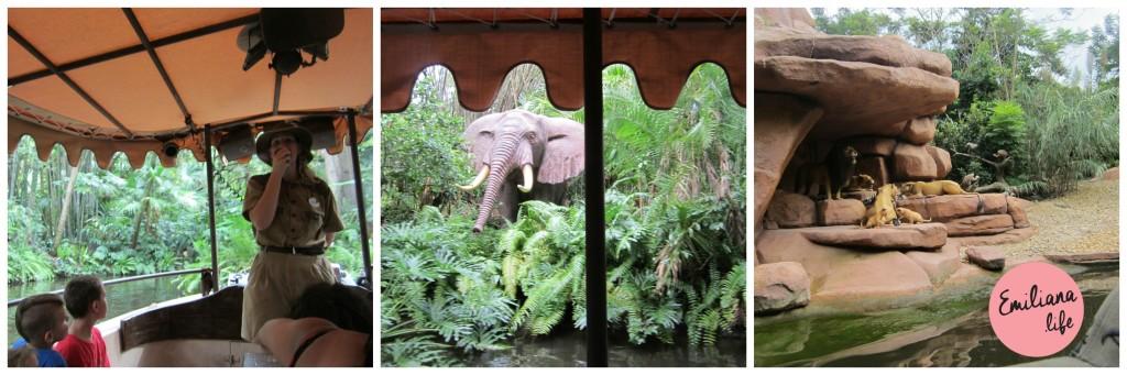 45 safari disney