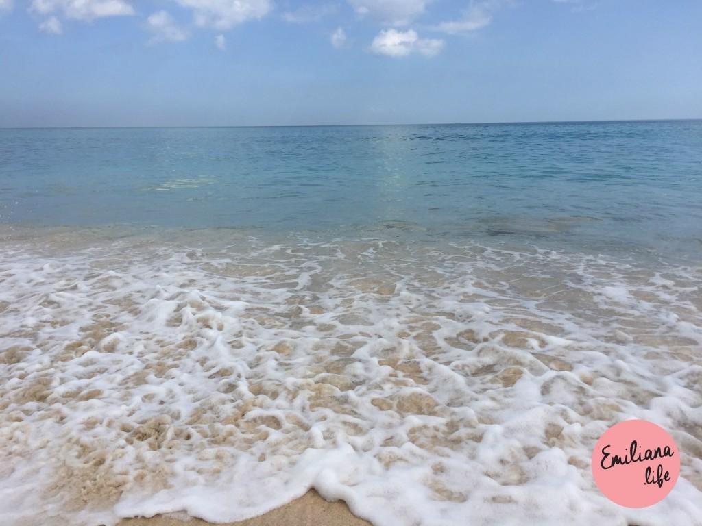 75 espuma mar praia dreamland