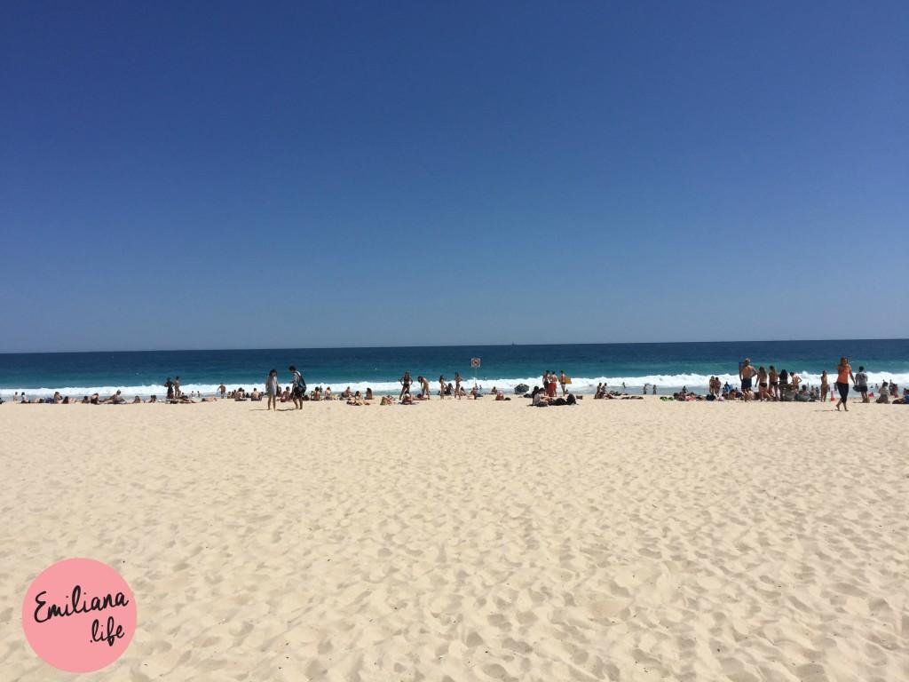 31 praia lotada scarborough