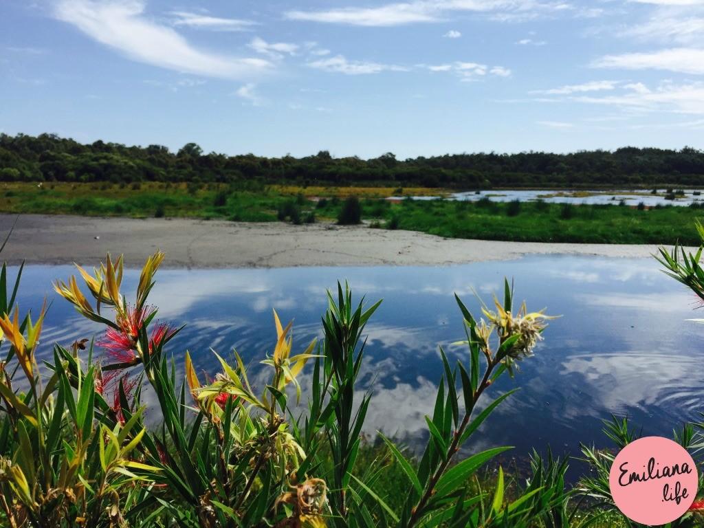 184 yanchep national park flores lagoa