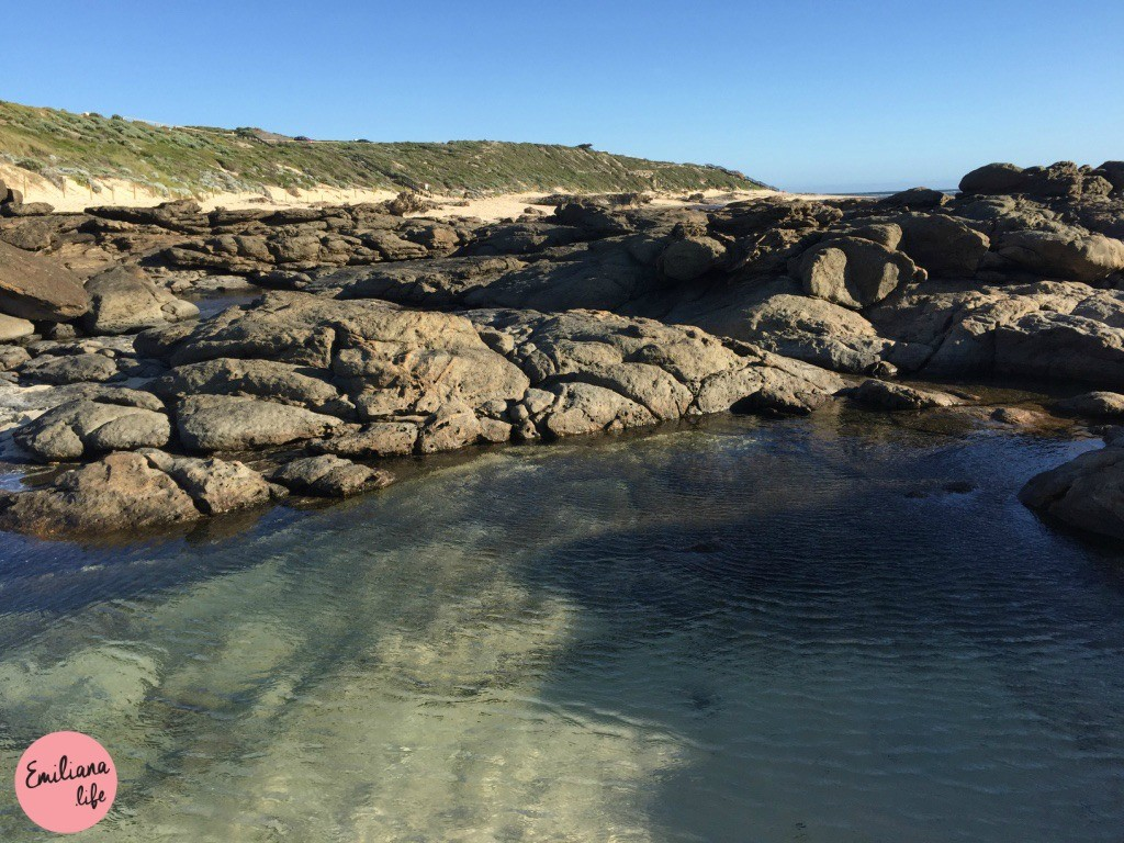 189 rock pool piscina surfers beach