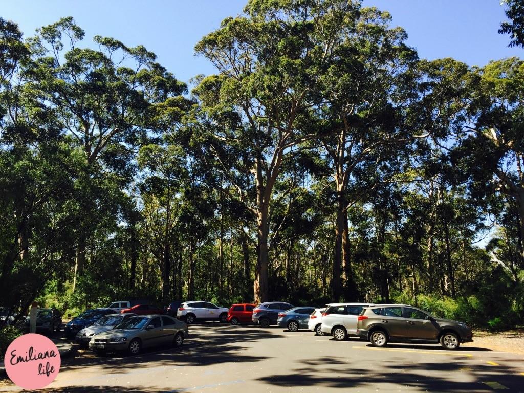 205 estacionamento porta jewel cave margaret