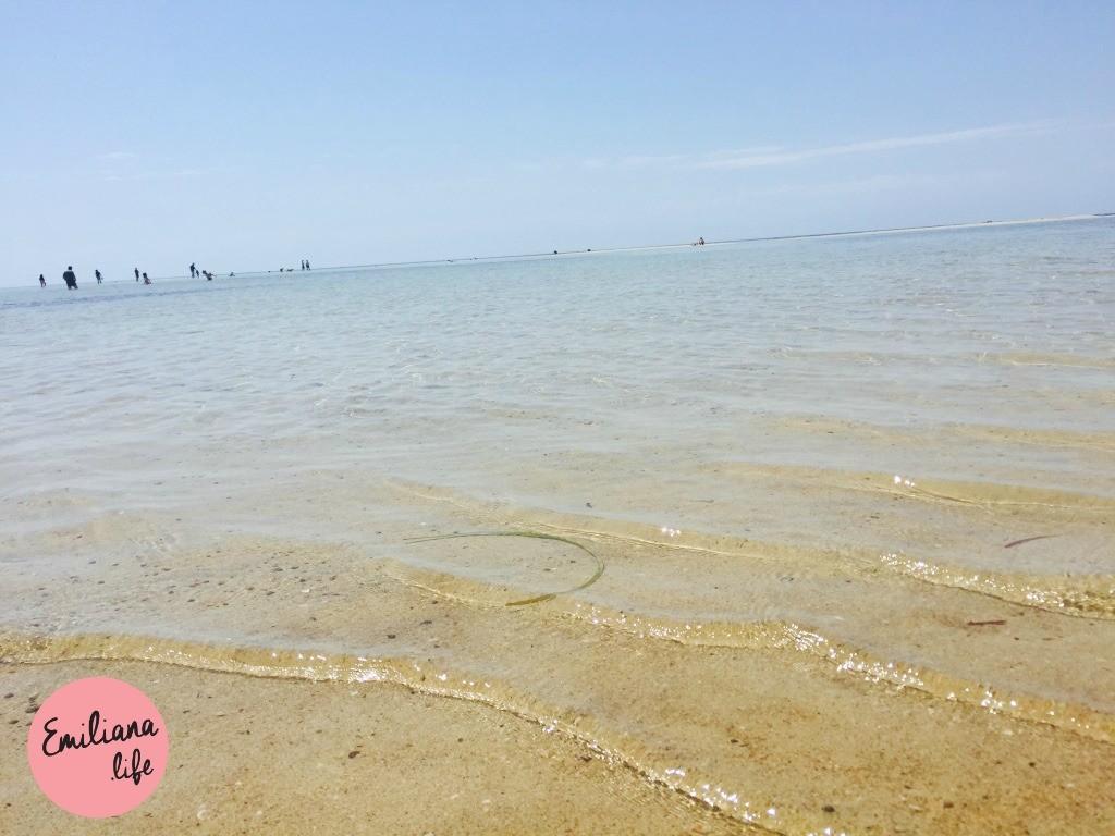 246 mar areia geograph bay duns borough