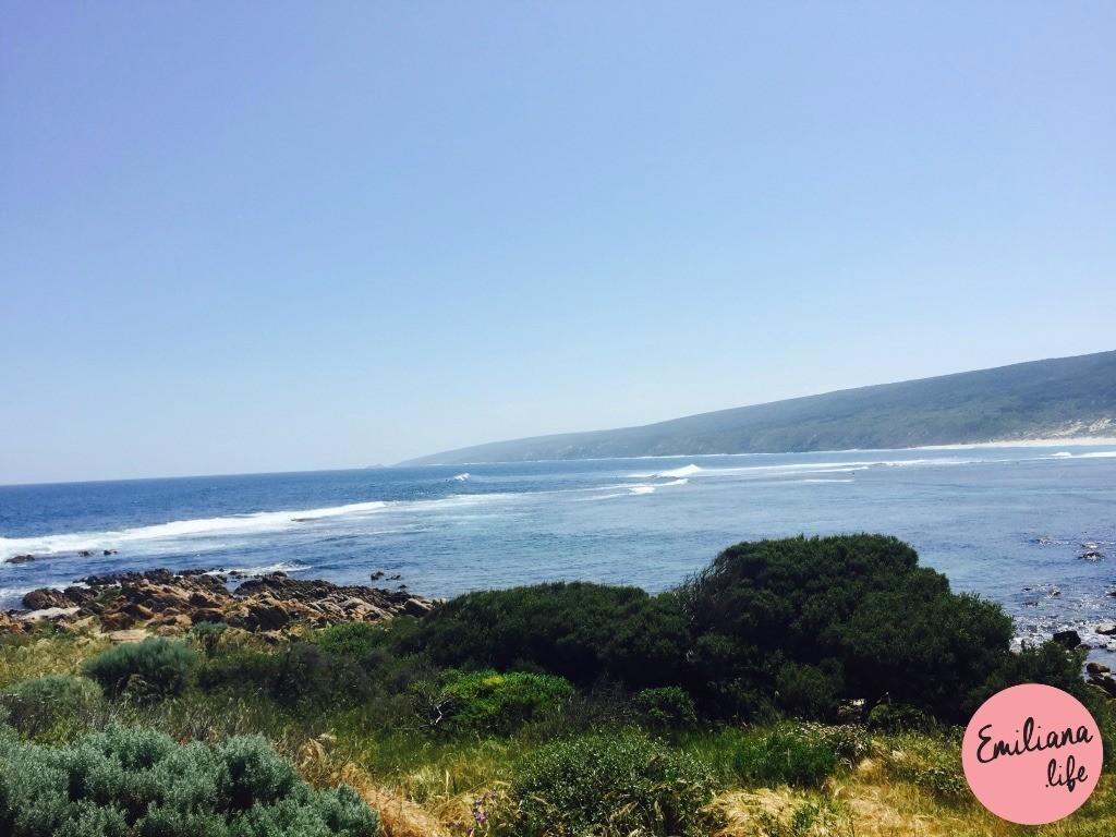286 yallingup ondas verde