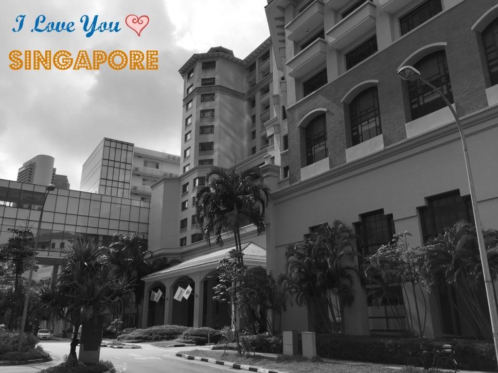 674 i love you singapore