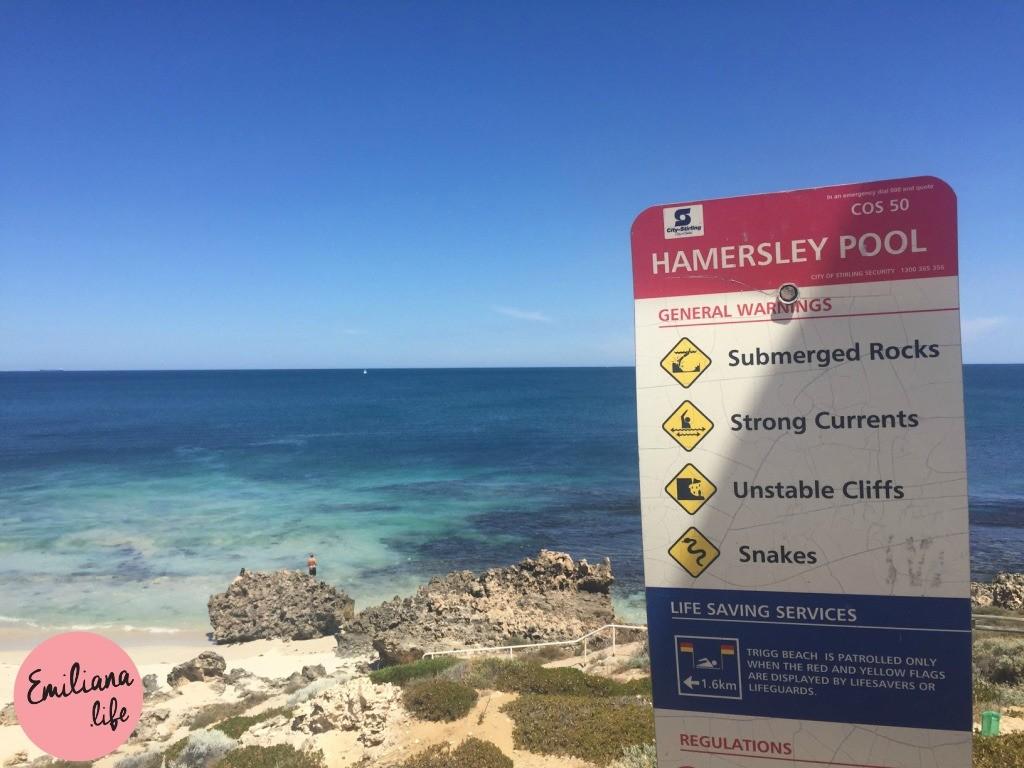 811 hamersley pool placa