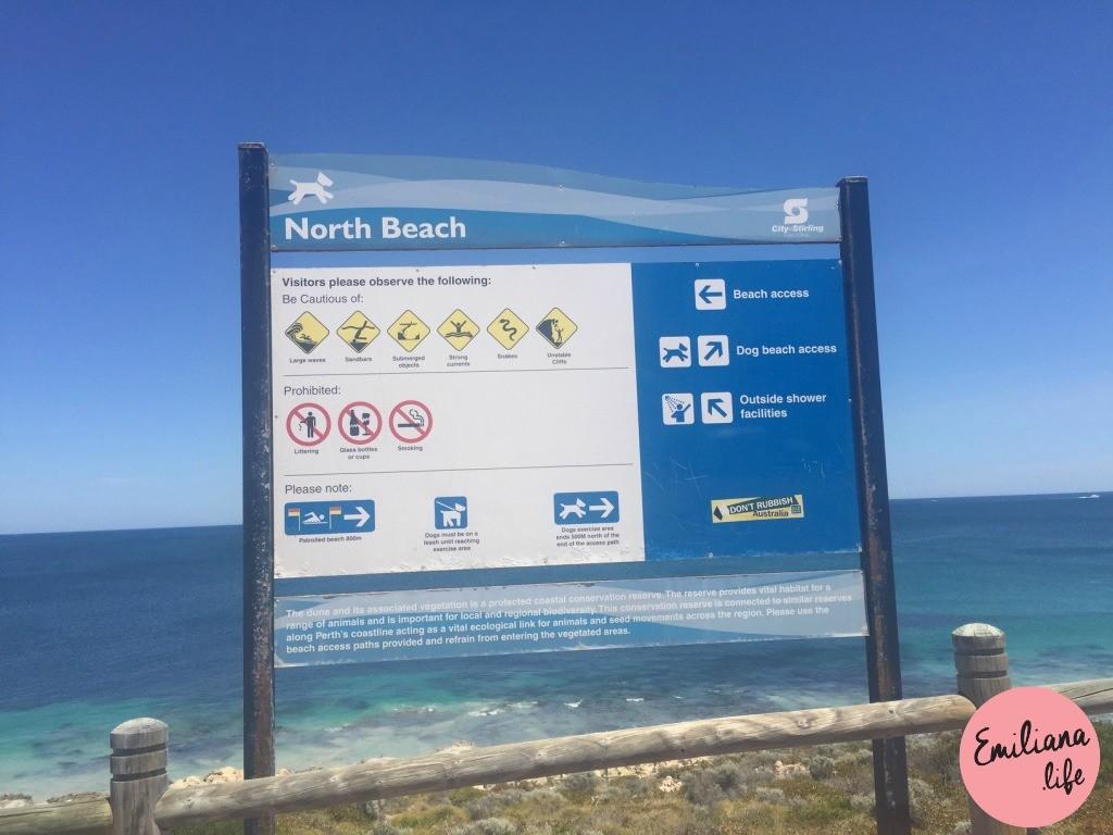 818 north beach placa grande