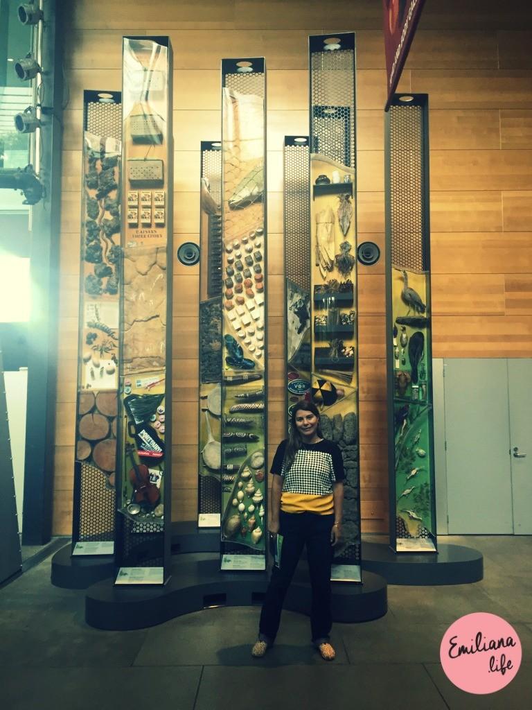 42 emiliana melbourne museum