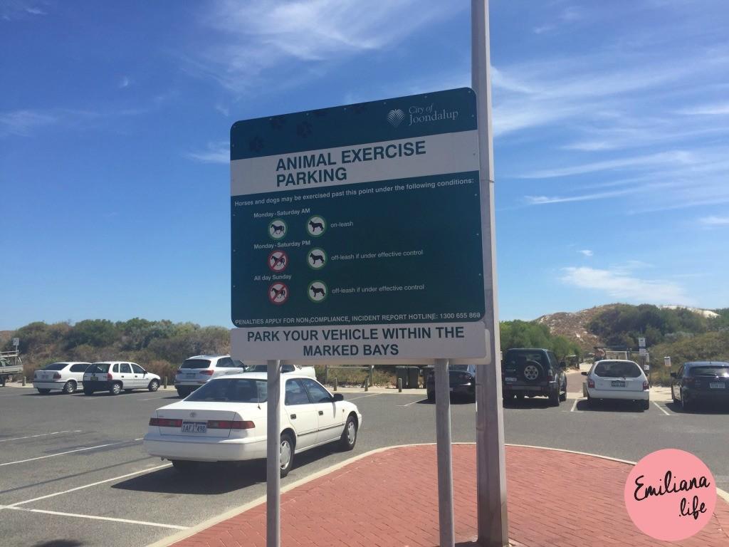 836 hillarys animal parking