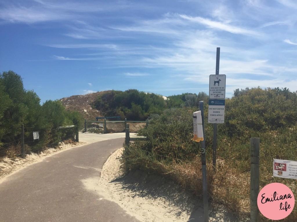 838 entrada praia hillarys animal
