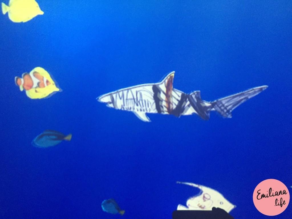 875 peixe martin sealife