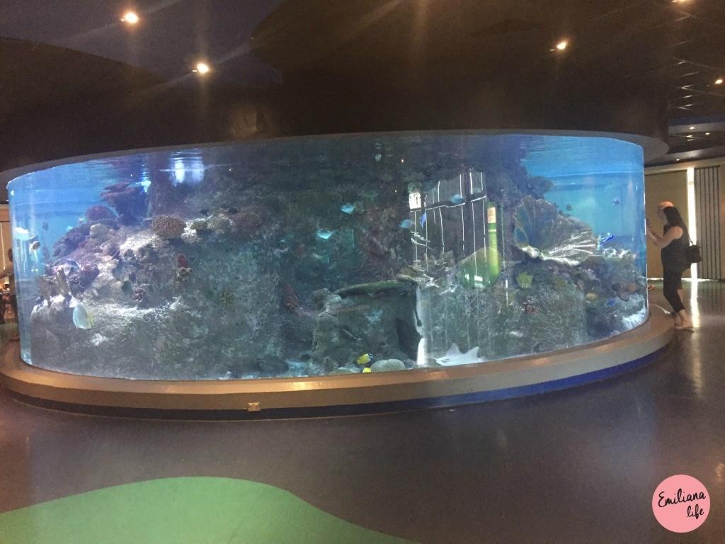 877 sealife aquario melbourne