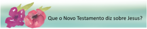 o que o novo test diz sobre jesus